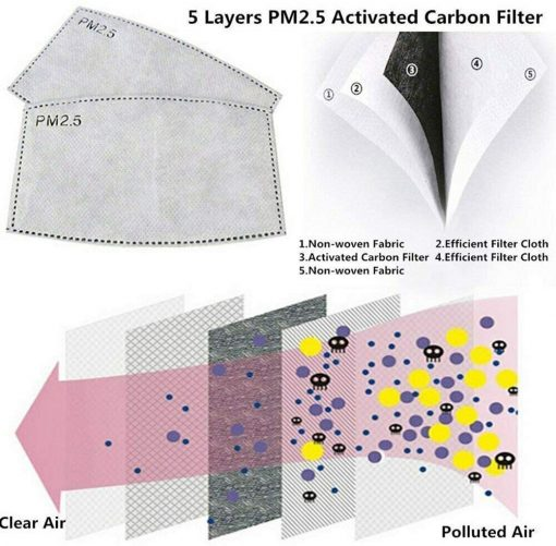 PM2.5 Activated Carbon 5 Layers Filter - Details